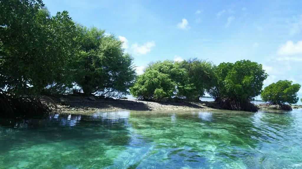 ミクロネシア 首都ポンペイ島